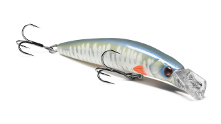 Top Water Minnow