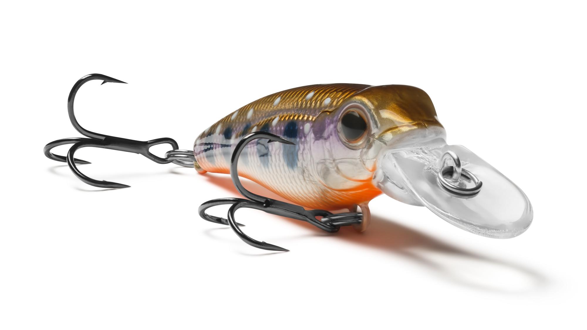 EG-073F Pygmy 40