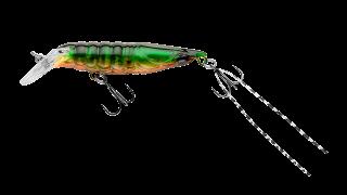 EG-114SP Shrimp 50