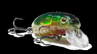 Beetle Buster