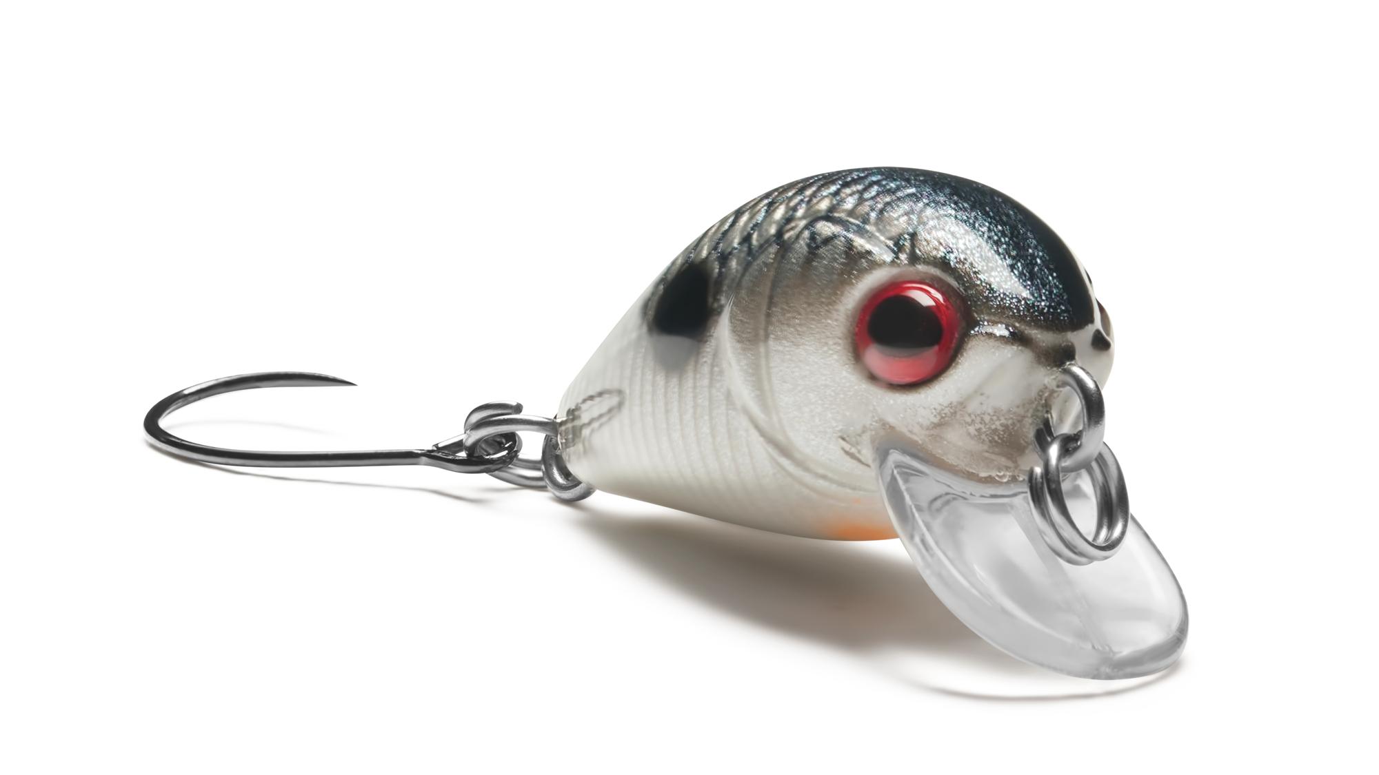 EG-182-SP Crazy Plankton